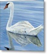Solitary Swan Metal Print