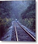 Solitude  031307-66 Metal Print