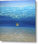 Solo Under The Turquoise Sea Metal Print