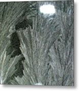 ''sometimes In Winter.....'' No.13, Mon--5dec2011 Metal Print