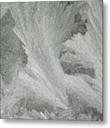 ''sometimes In Winter.....'' No.22, Tue--6dec2011 Metal Print