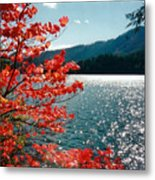 Song Of The Fall. Metal Print