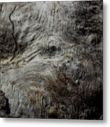 Songlines Series Metal Print