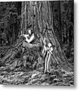 Songs In The Woods Metal Print
