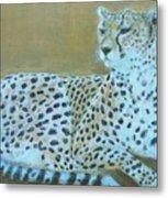Sonia The Cheetah II Metal Print