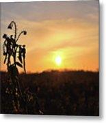 Sonnenuntergang Metal Print