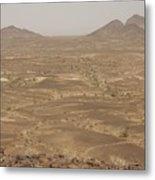 Sonora Desert. California. Metal Print