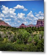 Sonoran Countryside Metal Print
