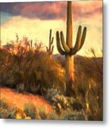 Sonoran Desert Morn Metal Print