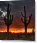 Sonoran Desert Sunrise 1 Metal Print