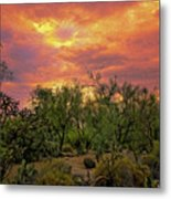 Sonoran Desert Sunset Op46 Metal Print