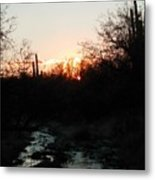 Sonoran Sundown Metal Print
