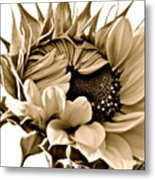 Sophisticated Metal Print