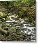 Sounds Of A Mountain Stream Metal Print