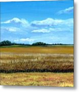 South Dakota Summer Metal Print