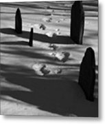 South For The Winter Metal Print