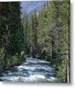 South Fork San Joaquin River - Kings Canyon National Park Metal Print