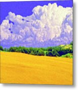 South Forty Metal Print