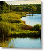 South From The Causeway Huntington Beach State Park Sc Metal Print