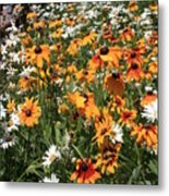 South Lake Tahoe Flowers Metal Print