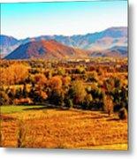 South Reno In Fall Metal Print
