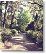 Southern Beauty 2 - Tallahassee, Florida Metal Print