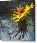 Southern Blue Jean Pocket Metal Print