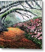 Southern Charm Oak And Azalea Metal Print