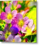 Southern Missouri Wildflowers 1 - Digital Paint 1 Metal Print