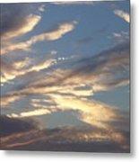 Southern Skies Metal Print