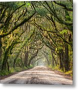 Southern Tree-lined Dirt Road Of Dreams Metal Print