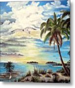 Southwest Florida Metal Print