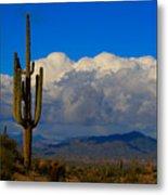 Southwest Saguaro Desert Landscape Metal Print