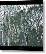Southwind Woods Metal Print
