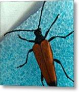 Space Age Beetle Metal Print
