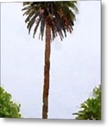 Spanish Palm Tree Metal Print