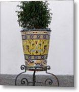 Spanish Planter Metal Print