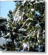 Sparkling Icicles  Metal Print