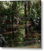 Sparkling Swamp Metal Print