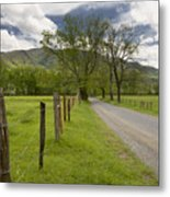 Sparks Lane In Cade Cove Metal Print