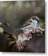 Sparrow In The Garden Metal Print