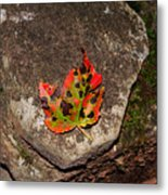 Speckled Leaf Metal Print
