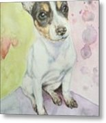 Speckled Nose Muddy Toes Metal Print