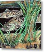 Specks In The Grass Metal Print by Robert Wolverton Jr