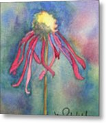 Spent Flower Metal Print