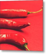 Spice Of Still Life Metal Print