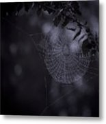 Spider Art Metal Print
