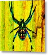 Spider Metal Print by Daniele Smith