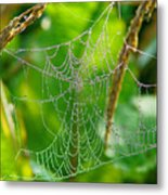 Spider Web Artwork Metal Print
