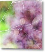 Spiderweb In The Mist Metal Print